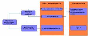 анти сарс 1_медипро